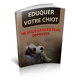 Eduquer votre chiot | Cybelplace