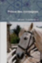 Guéri par l'amour d'un cheval | Cybelplace