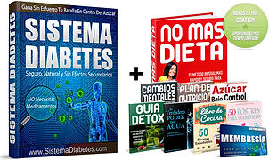 Sistema diabetes   Cybelplace