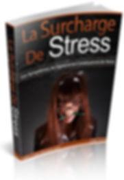 La surcharge de stress | Cybelplace