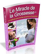 Das Wunder der Schwangerschaft | Cybelplace