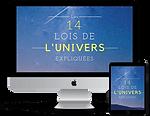 Maitriser les 14 lois de l'univers | Cybelplace