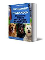 Soignez le syndrome d'abandon chez votre chien   Cybelplace
