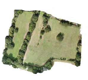 Raw meadow.jpg