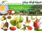 fruit farm penangحديقة الفواكة بينانج