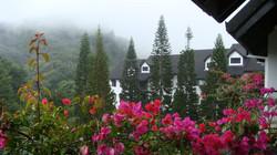 فندق ستروبري بارك مرتفعات كاميرون هايلاند ماليزيا - Strawberry Park Resort, Cameron Highlands..`