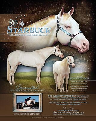 RFF Starbuck Stallion Flyer.jpg