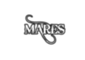 Mares - White & Black.png