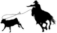 roping-03-2.png