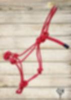 Red Halter - Wood Background w Brand.jpg