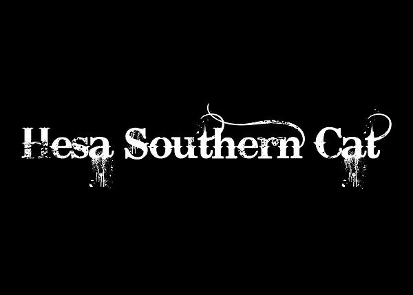 Hesa Southern Cat - White & Black.png