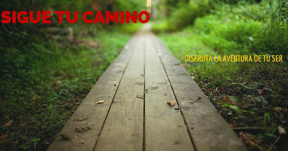 sigue tu camino.png