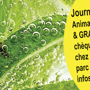 Initiations - GreenDays Issoire