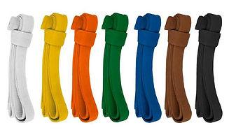 programa-cinturones-aikido-tomiki.jpg