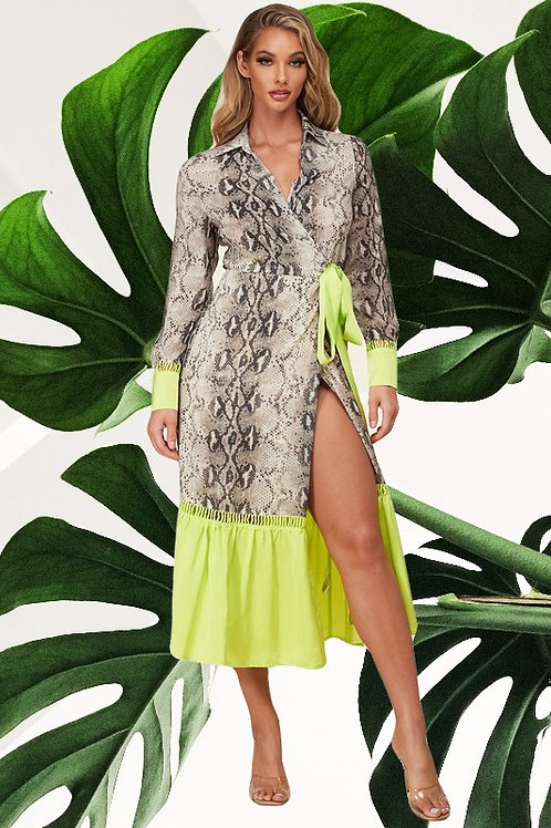 Snake Print Lime Edge Dress