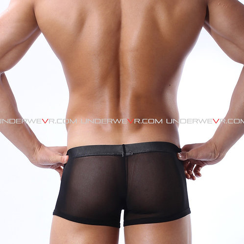 BRAVE PERSON - Men's Trunks Transparent Ice Silk Underwear BPWSPJ001