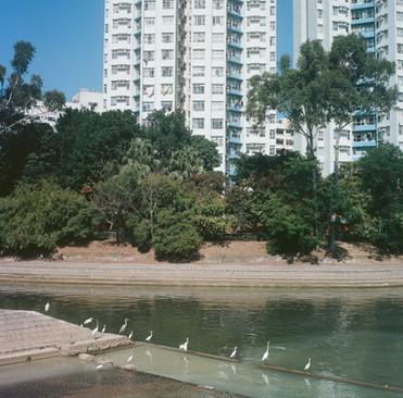 Tai Wai canal