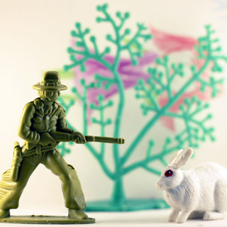 The huntman and the rabbit