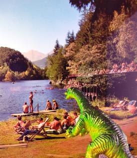 Dino10x15cm.jpg