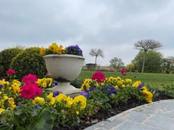Jardin feuri