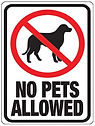 no pets allowed.jpg