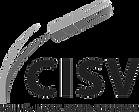 CISV-300x241.png