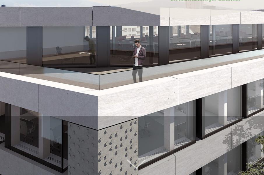 Wengihof Fassaden Projekt
