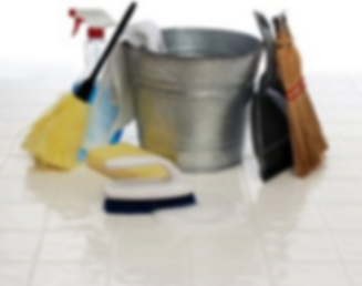 Cleaning supplies.png