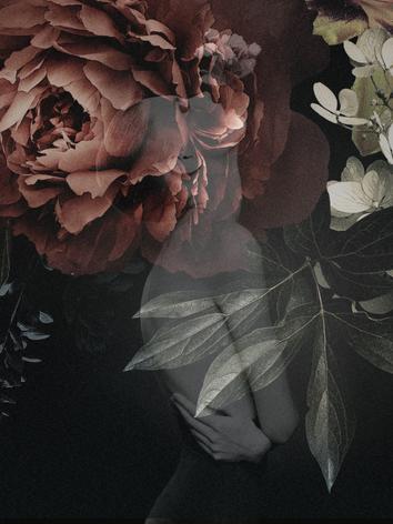 Valentina - Adorn Series