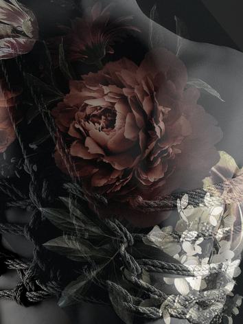 Lucia - Adorn Series