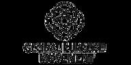 GPM LOGO FOR WEBSITE HEADER.png
