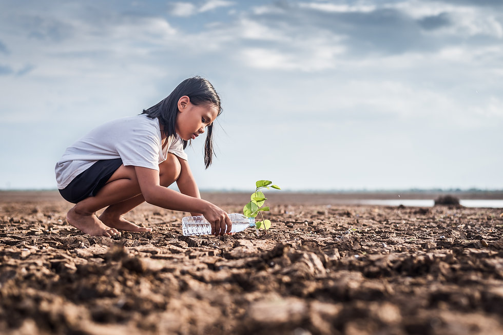 Asian girl watering green plant in dry l