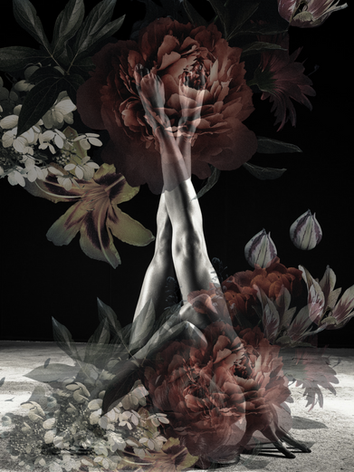 Alessia - Adorn Series