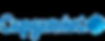 capgemini-logo-2.png