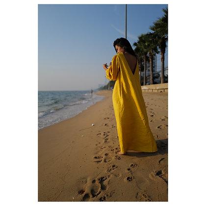 Alexsander - full sleeved backless dress