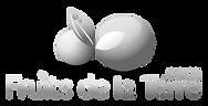 logo-fdt(1)_edited.png