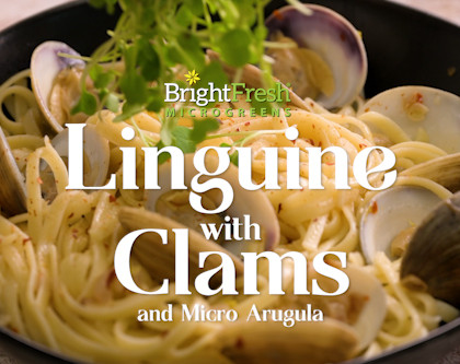 Linguine with Clam Sauce and Micro Arugula!