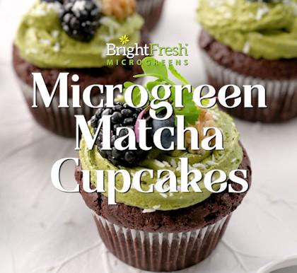 Microgreens Matcha Cupcakes