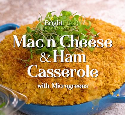 Mac n' Cheese Ham Casserole with Microgreens