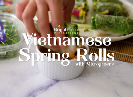 Traditional Vietnamese Spring Rolls with a Micro Twist