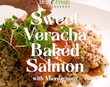 Sweet Veracha Baked Salmon and Micro Rainbow Mix