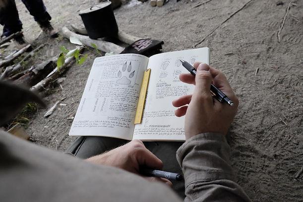Journaling für Fährtenleser und Wildnisp