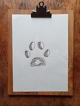 Katzenpfote zeichnen