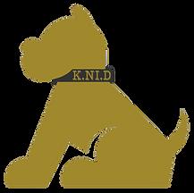 Educateur canin, Comportementaliste Paris, 94, 93, 77, coach canin, conseils canins