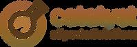 Catalyst eSports Solutions Logo
