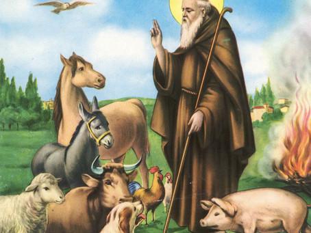 17 gennaio - «Sant'Antuono mascher' e suon'» inizia il Carnevale contadino.