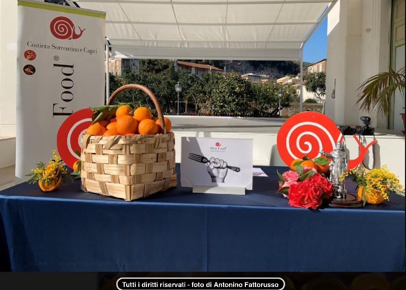 Le arance di Sorrento allo Spremuta Day 2019 a Villa Fiorentino