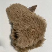 Tessuto di peluche
