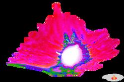 Cave Graphics Finxs (5).