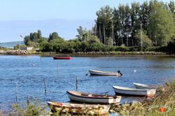 Otterup Harbour 4